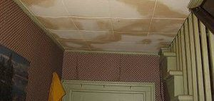 Water Damage and Mold On Ceiling
