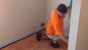 Mold Cleanup Professional On The Job