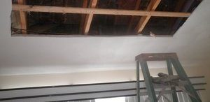 Mold Cleanup and Water Damage Repairs On Ceiling