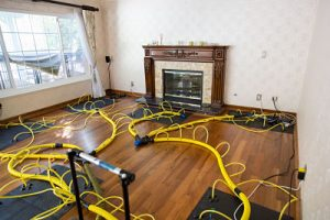 Drying Out A Living Room After A Home Flood